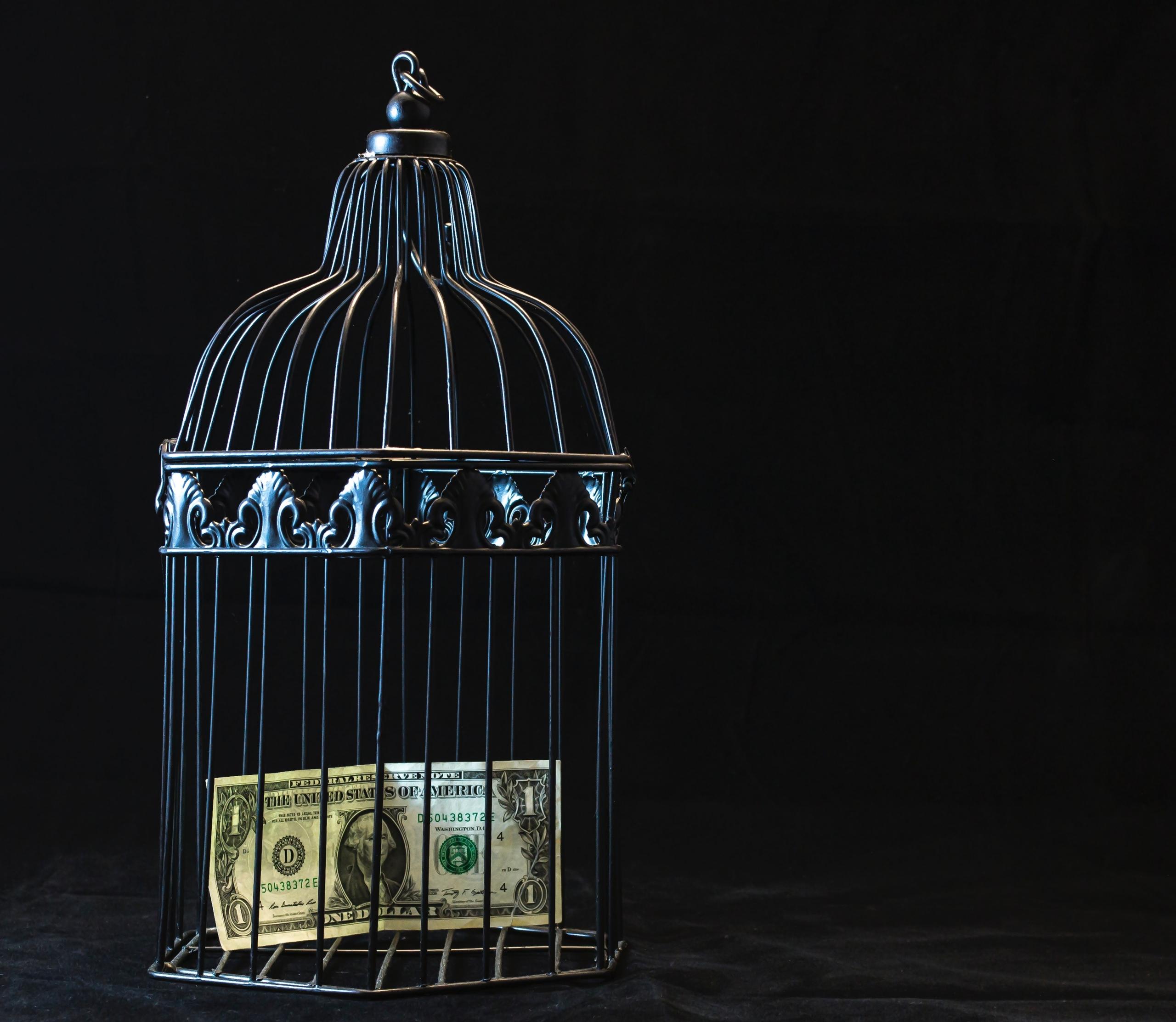 bani in colivie